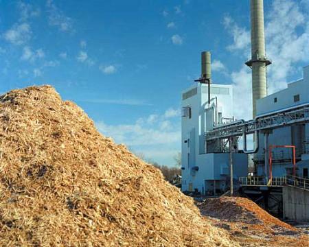 biomassplant-1